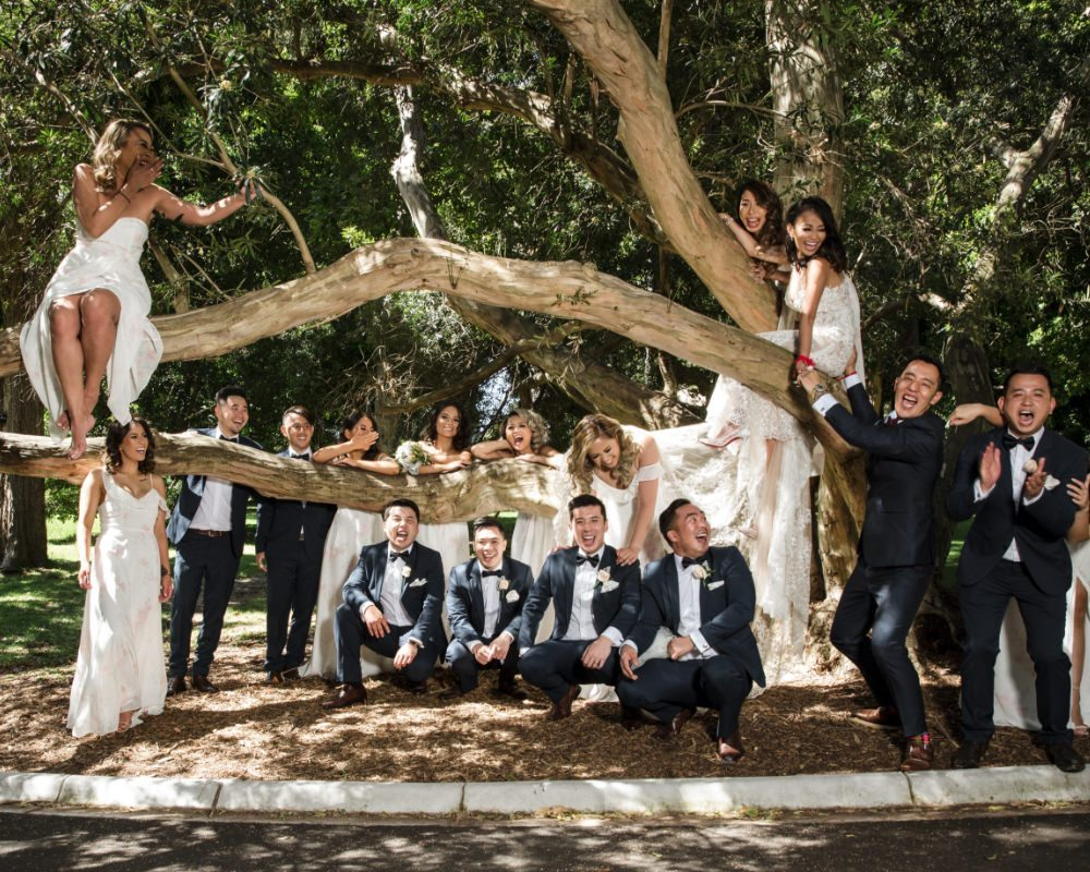 Botanical Gardens - Bridal party in tree