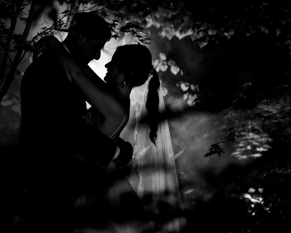 Lyrebird Falls - Night time portraits